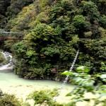 猿が渡る吊り橋「サル橋」がある