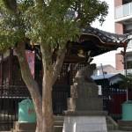 新田神社より歩いて3分ほどの氷川神社。こちらも会場となっている