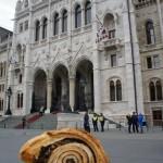 そして、ついでにパンをもらったので今日の国会議事堂とパシャリ