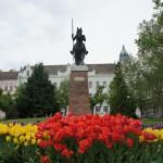 チューリップが咲き誇るシティーホール近くの公園