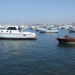 アレキサンドリア湾沿岸のヨットハーバーから見た湾内の風景