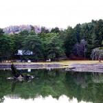 平安時代の遺構として名高い毛越寺の浄土庭園・大泉ヶ池