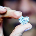 魅惑のダイヤが大規模な商談会に大集合