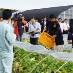 青森県立五所川原農林高校、GGAP認証の農産品を海外輸出