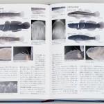 天皇陛下も御執筆、図鑑「日本魚類館」を刊行