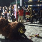 パレード後の提灯奉迎の集いでは獅子舞などの伝統芸能が披露された=3月27日、沖縄県那覇市奥武山公園