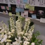 ニコニコ動画の立役者、 ビリー・ヘリントン氏が 2018年3月2日に亡くなられた事を忍ぶ献花