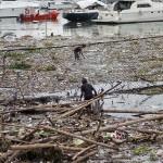 海面を歩けるほどのゴミが流れ着いた