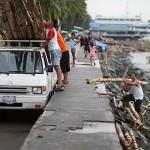 漂着物の竹を回収する人々