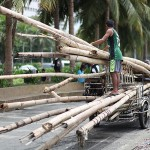流れ着いた竹を回収する人々