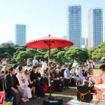 今年で11回目、日本最大級の「東京大茶会」
