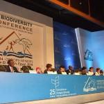 第14回生物多様性条約締約国会議