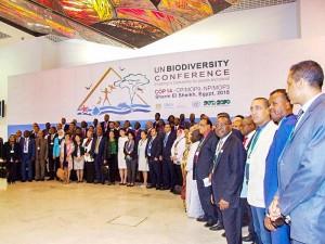 生物多様性条約締約国会議