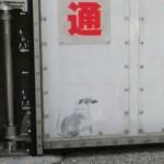日の出駅近くの防潮扉に「バンクシー」の作品?