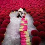 香りで迎える旧正月、線香の生産が最盛期