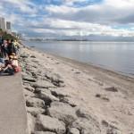 大規模な清掃で砂浜が復活