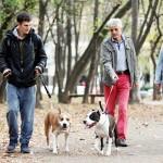 英リバプール大の研究者ら、犬を飼うと健康に