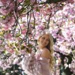日英の絆を華やかに彩る、桜5000本を寄贈