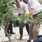 外交官・杉原千畝を顕彰する植樹、新たに