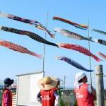 熊本地震の仮設団地を泳ぐ35匹こいのぼり