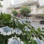 気象庁が発表、関東甲信・北陸など梅雨入り