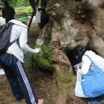 「虫が苦手」を克服へ、小学校教員たちの挑戦