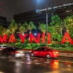 マニラ市内の並木には早くも電飾のデコレーション