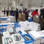 豊洲市場開場1年、「日本の台所」順調な船出