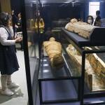 エジプトの若い男性のミイラとその棺