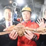 最高値にどよめき、松葉ガニが1杯500万円で