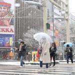 北海道の日本海側は猛吹雪、きょうまで警戒