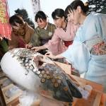 「浅草廿日戎」に巨大な冷凍マグロがお目見え