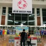 プロサッカーの沖縄キャンプ、過去最多の29