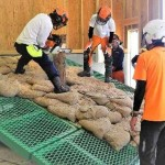福島県、森林を守り育てる担い手を数多く養成