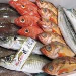 水産卸業者、高級鮮魚セットなど新サービス展開