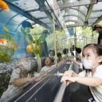 親子連れなどが来園、久しぶりの動物園を満喫