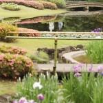 皇居・東御苑の一般公開が約2カ月ぶりに再開