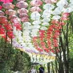 赤や黄色、2000本の色鮮やかな傘の回廊