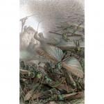 バッタの大襲撃を描いたブレーム動物事典挿絵(ウィキぺディアから)