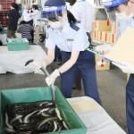 成田空港では税関職員もフェースシールド着用