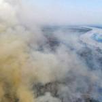 世界自然遺産パンタナール、記録的森林火災発生