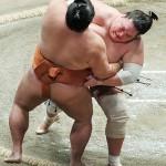 周囲の支えに感謝、元大関の照ノ富士が優勝