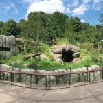 上野動物園に新パンダ舎「パンダのもり」完成