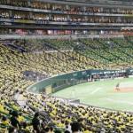入場者数の上限が引き上げられて開催されたプロ野球
