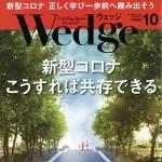 Wedge10