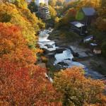 カエデやナナカマドで秋色に染まる「定山渓」