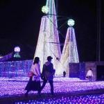 650万個の光の贈り物、よみうりランドで点灯式