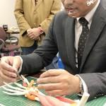 大阪大など、末梢神経再生する極薄シートを開発
