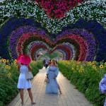 「ドバイ ミラクル ガーデン」は世界最大の花園