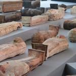 サッカラ遺跡で古代のミイラ100体以上を発見
